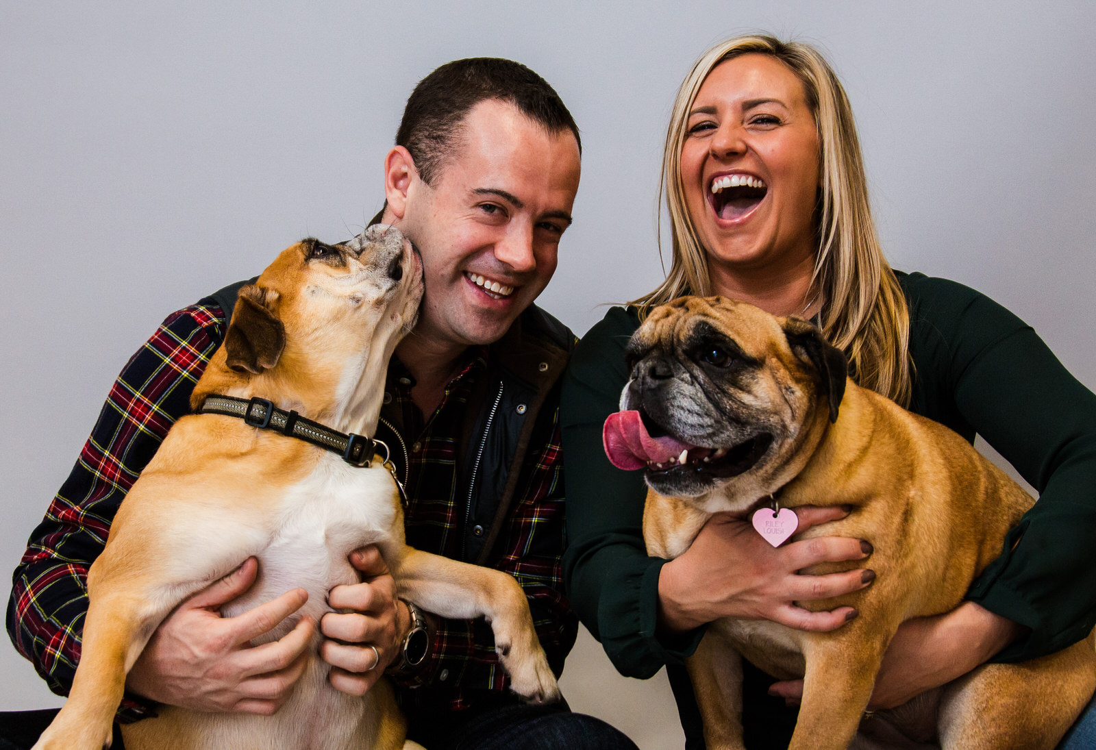 Couple laughing while holding their dogs in their laps for family portraits in Erie, PA